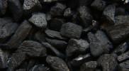 Jak powstał węgiel? – powrót do czasów prehistorycznych
