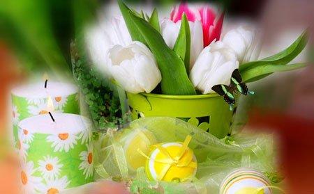 tulipany-swieca