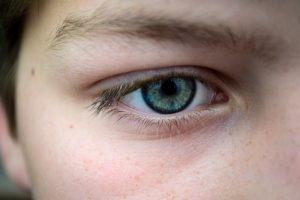 część twarzy - oko