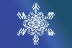 snow-flake-1608228_640
