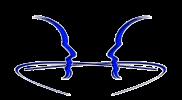 Makaton – język gestów i symboli – narzędzie do komunikacji dzieci niemówiących