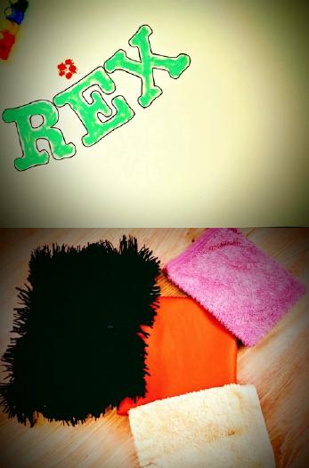 Kawałki materiałów o różnej fakturze, karton z imieniem REX