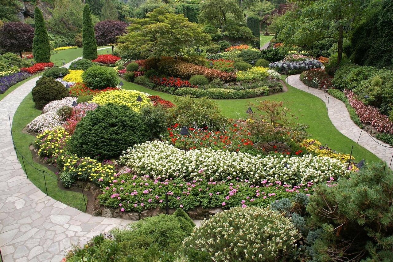 Kolorowy ogród: drzewa, krzewy, kwiaty