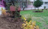 Zdjęcie przedstawia ogród