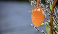 święta wielkanocne - pomarańczowa pisanka, bazie